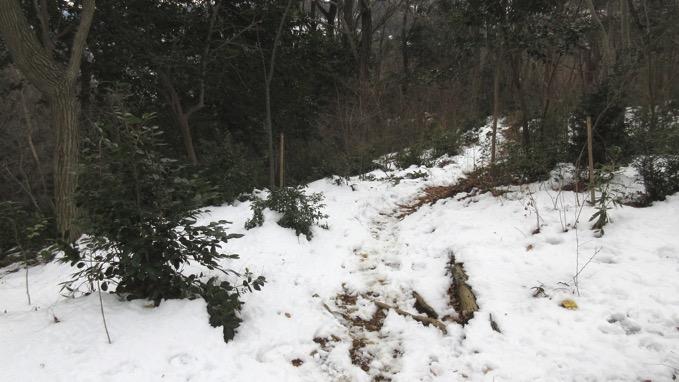 日和田山 雪