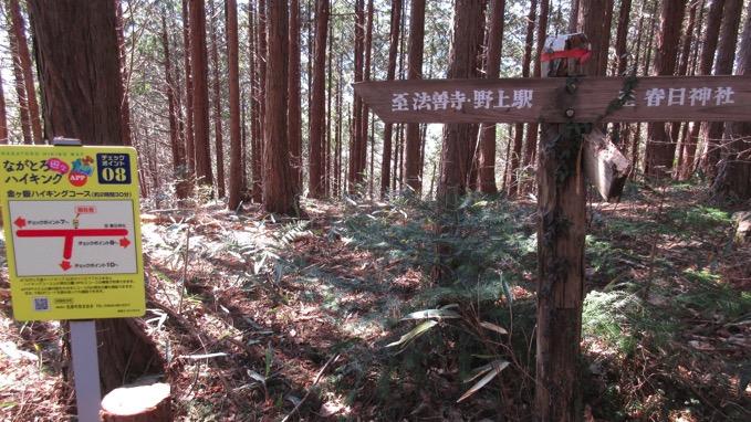 金ヶ嶽ハイキングコース