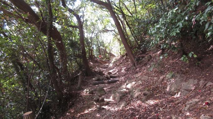 高麗山 ハイキングコース