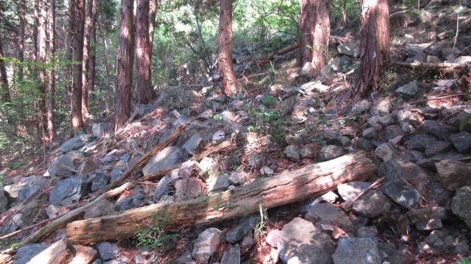 鞍掛山 岩コース