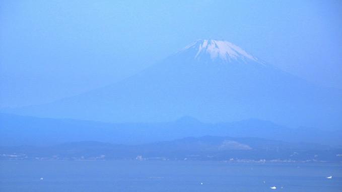 仙元山 展望台 富士山