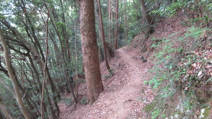 八王子城山 ハイキング