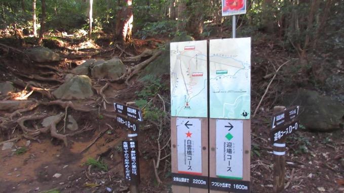 筑波山 白雲橋コース