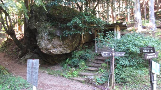 伊豆ヶ岳 登山口 大蔵山コース