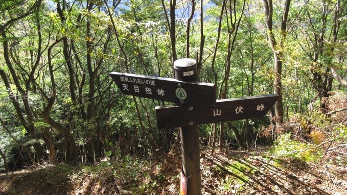 伊豆ヶ岳 登山