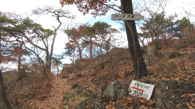 ローソク岩 分岐