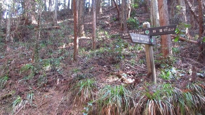 要害山 ハイキングコース