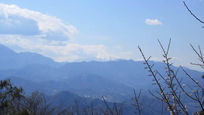 小仏城山 山頂