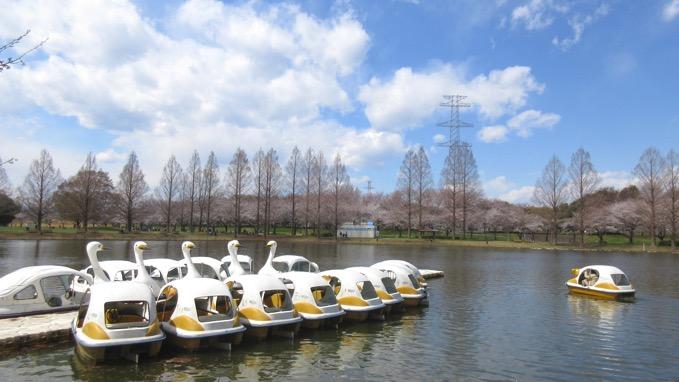 川越水上公園 ボート