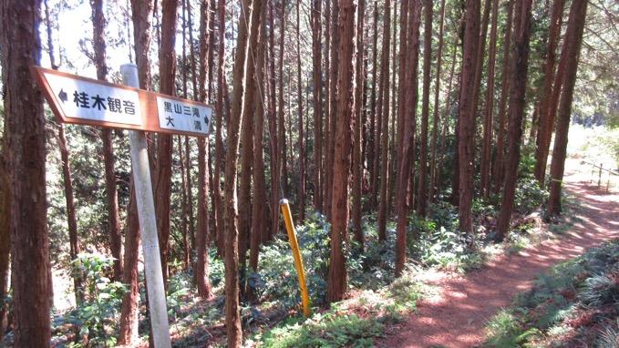 桂木峠 ハイキング