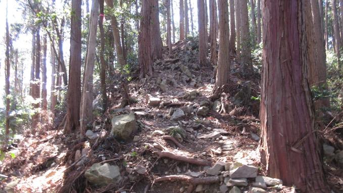 椎ノ木山 登山