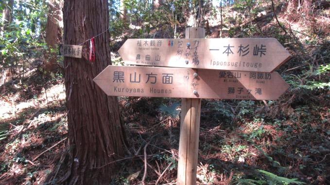 カイ立場 笹郷峠