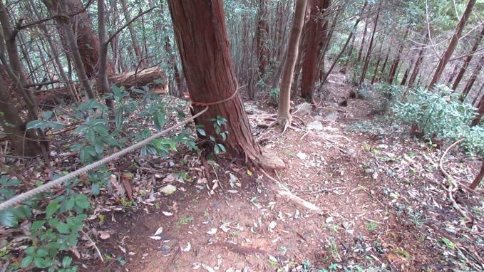 天覚山 ハイキング