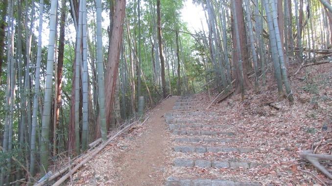 大澄山 ハイキング